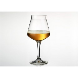 Tasting Glass Teku