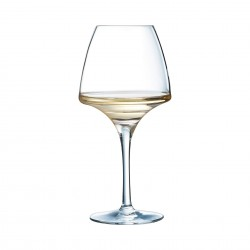 Glass Open Up Pro Tasting